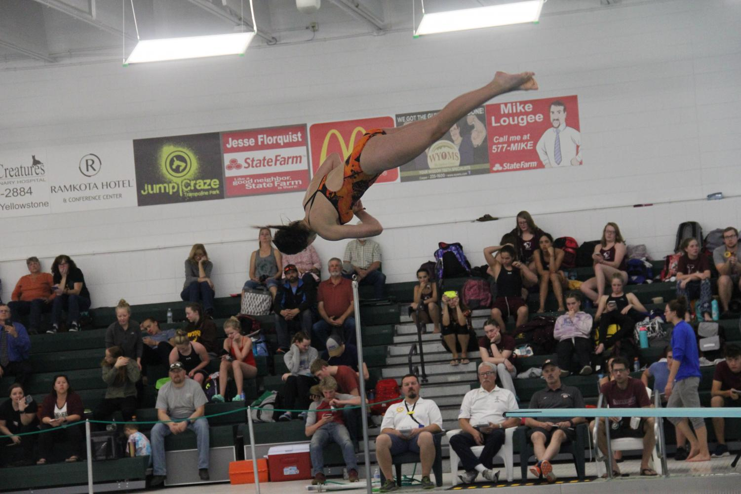 NC diver Gabby Haigler placed first in diving in Conference and State Swimming.